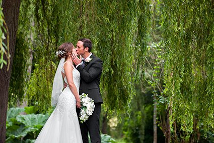 Romantic Leeds Castle wedding in the rain with teh groom kissing his bride beneath the huge weeping willow tree