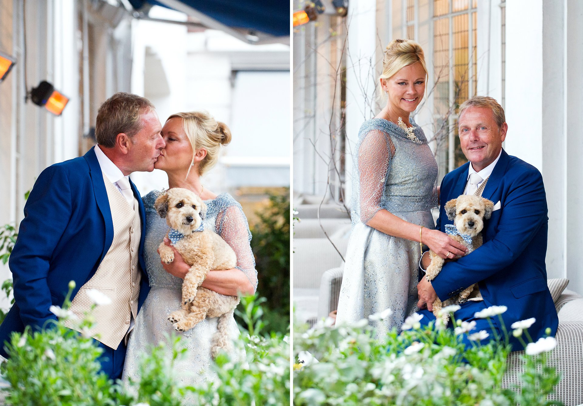 bluebird chelsea dog photography and a bride and groom with their little jackapoo just before their chelsea old town hall wedding