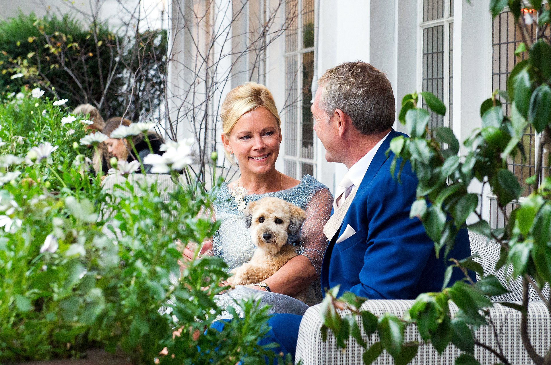 dog wedding chelsea and this little jackapoo with his mum and dad at bluebird chelsea just before their chelsea old town hall wedding
