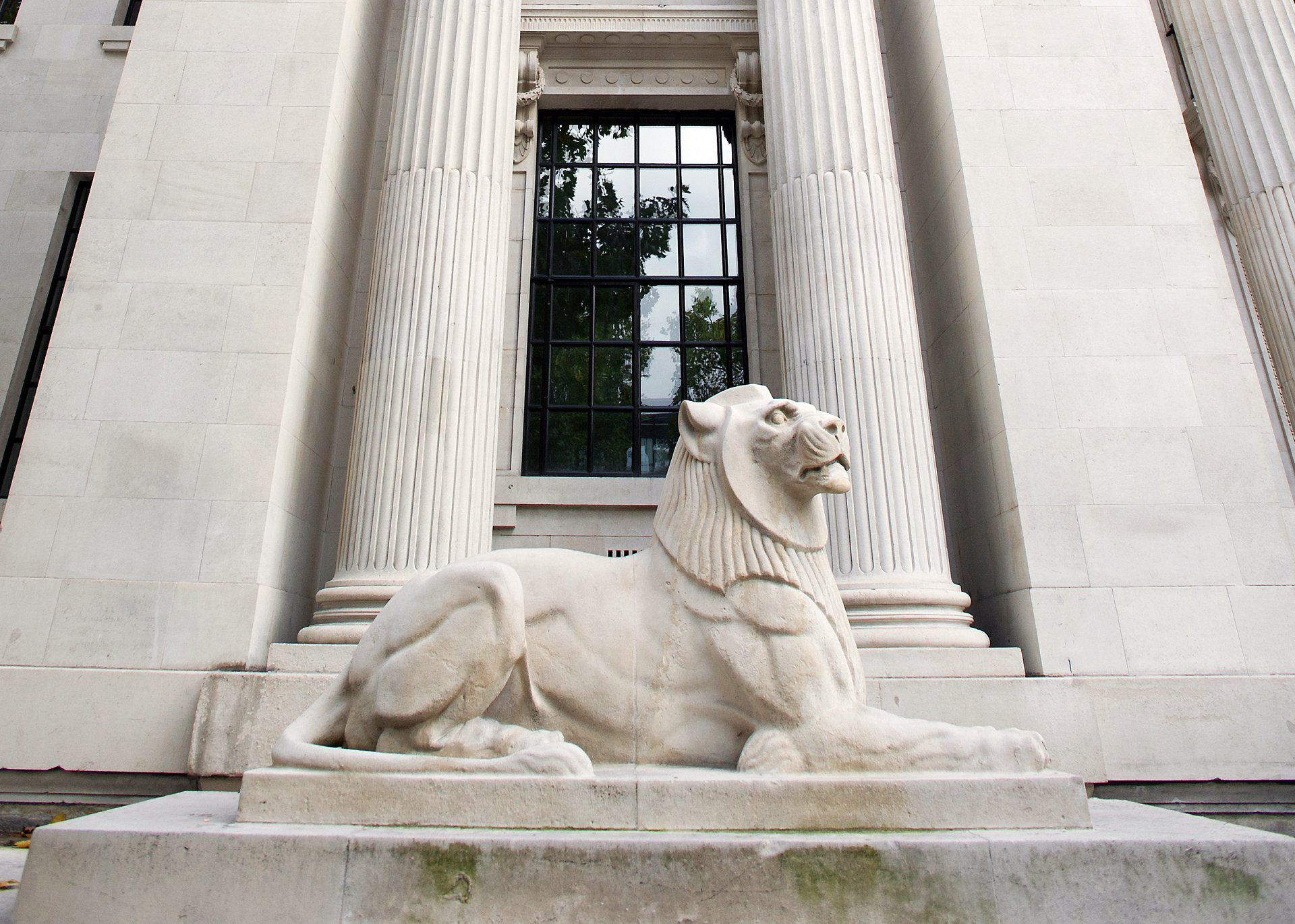 One of two stone lions outside Old Marylebone Town Hall after a thorough clean in 2017