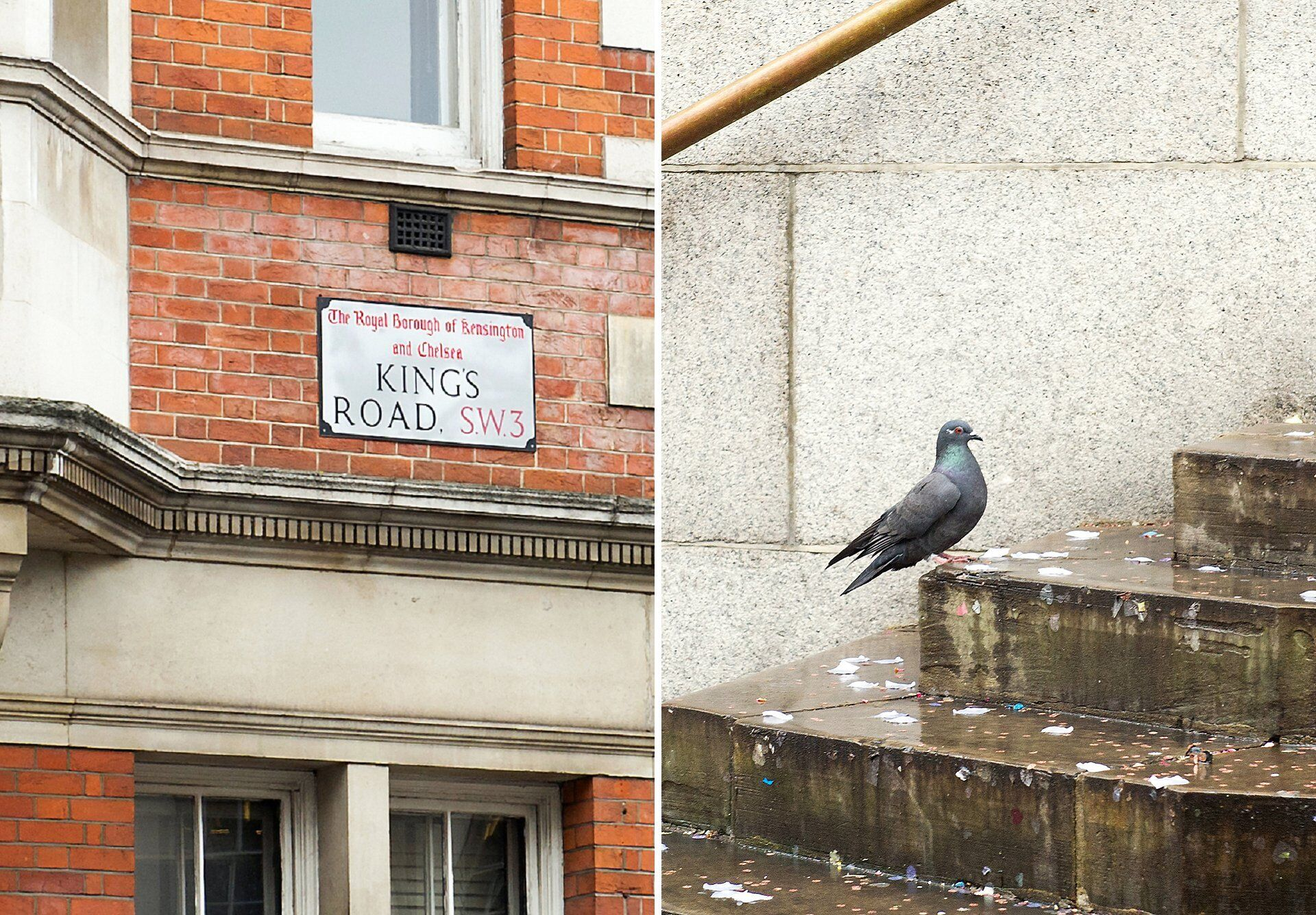 chelsea old town hall rainy wedding on kings road with pigeon
