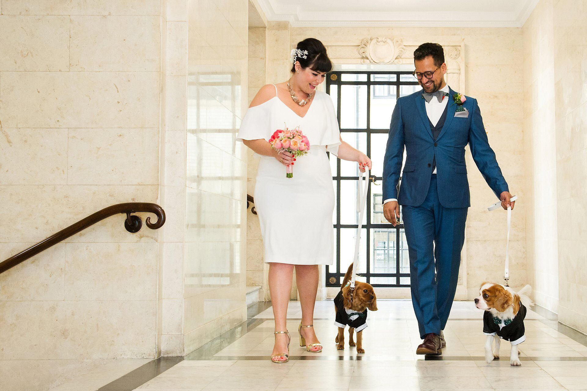bride and groom with their two spaniel dogs on the mezzanine level at old marylebone town hall