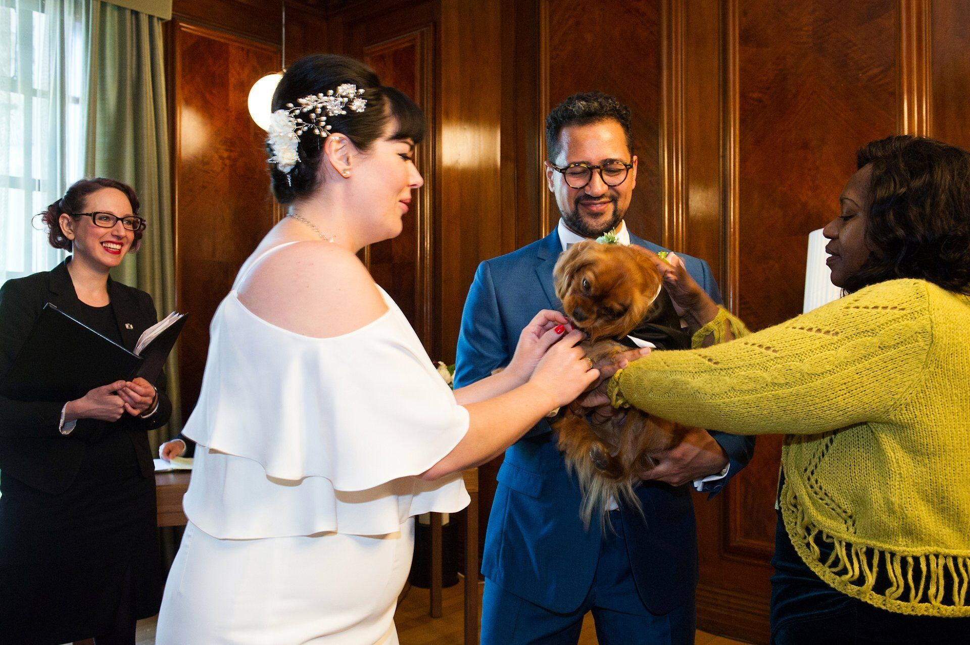 dog as ring bearer during marylebone room ceremony at old marylebone town hall