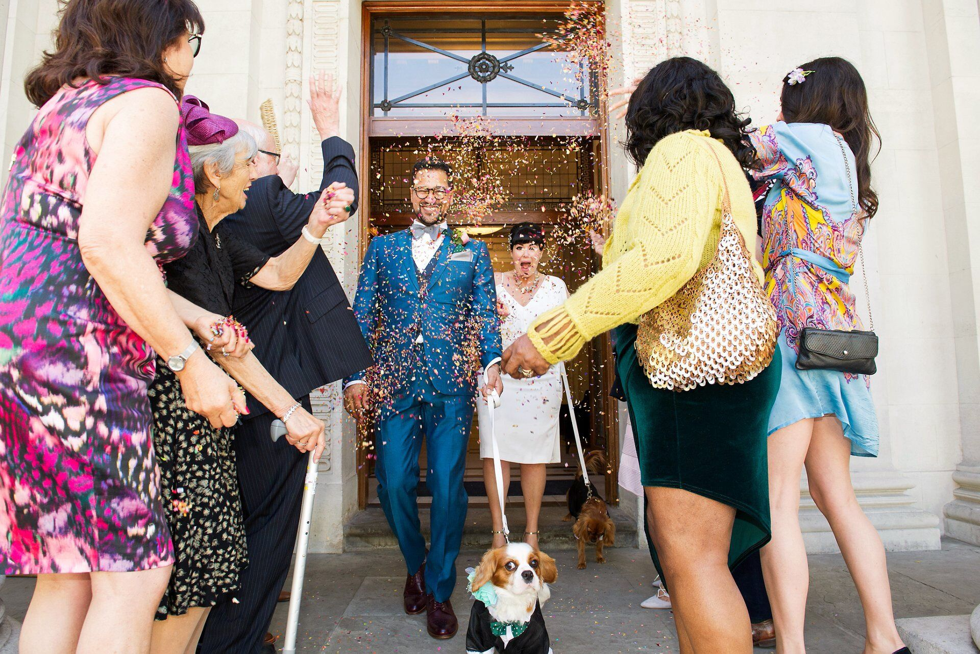 westminster register office wedding photographer emma duggan captures bride and groom and their two dogs leaving old marylebone town hall